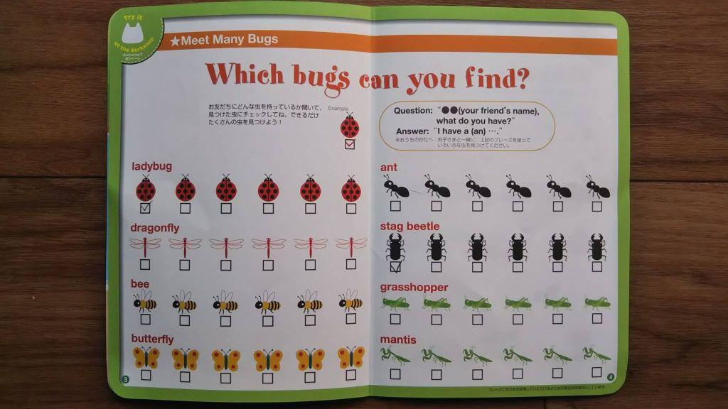 ステージ5 Meet many bugs